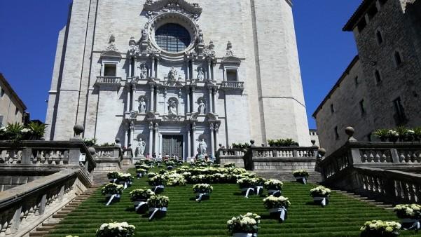 Žironos katedra
